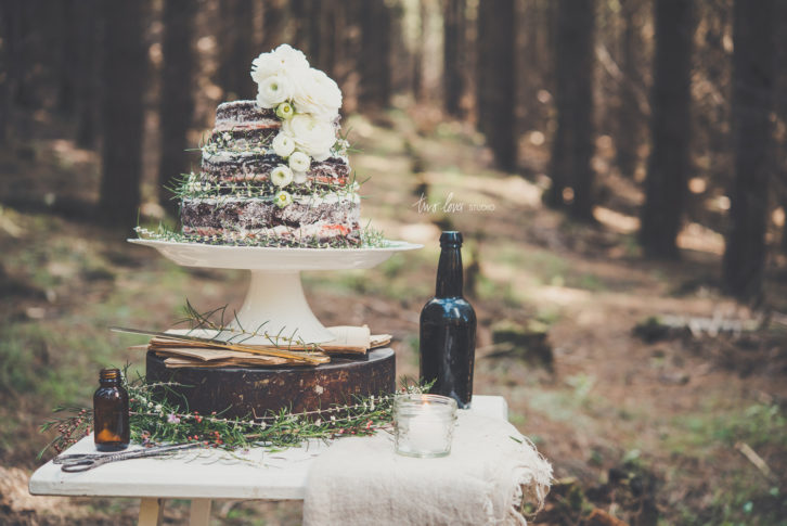 In My Dreams, There is a Cake in a Forest.