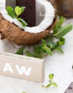Raw chocolate coconut Two Loves Studio 5