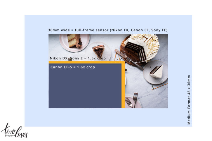 Understand what a camera sensor is in this quick guide and why a camera's sensor size affects image quality.