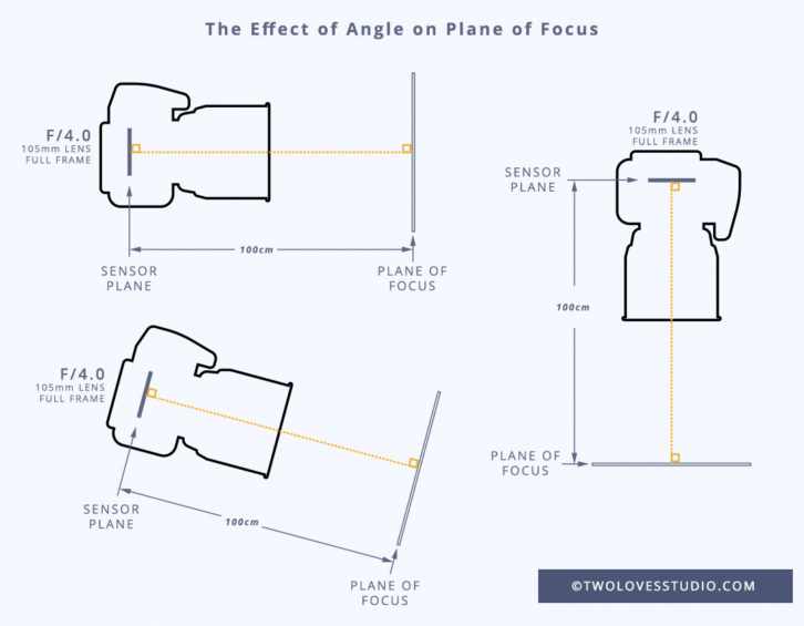 For tack sharp images with your macro lens, you must understand how Depth of Field and the Plane of Focus work. Click to read and for visual examples.