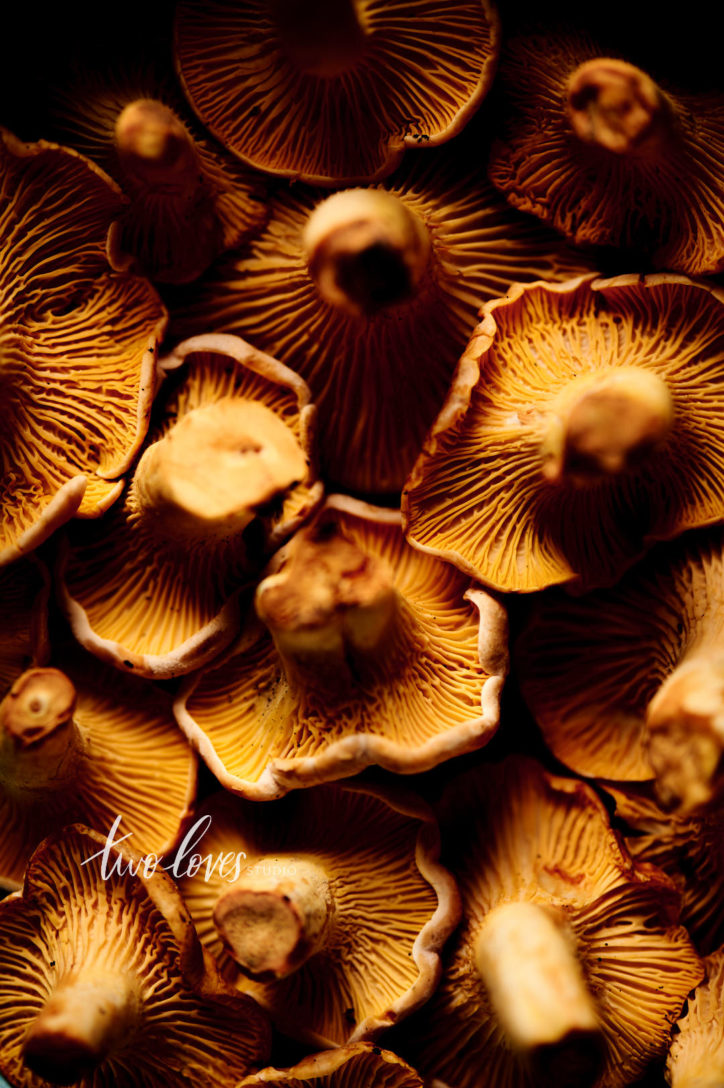 Chantrelle mushrooms. A macro photo to show the best camera settings for food photography.